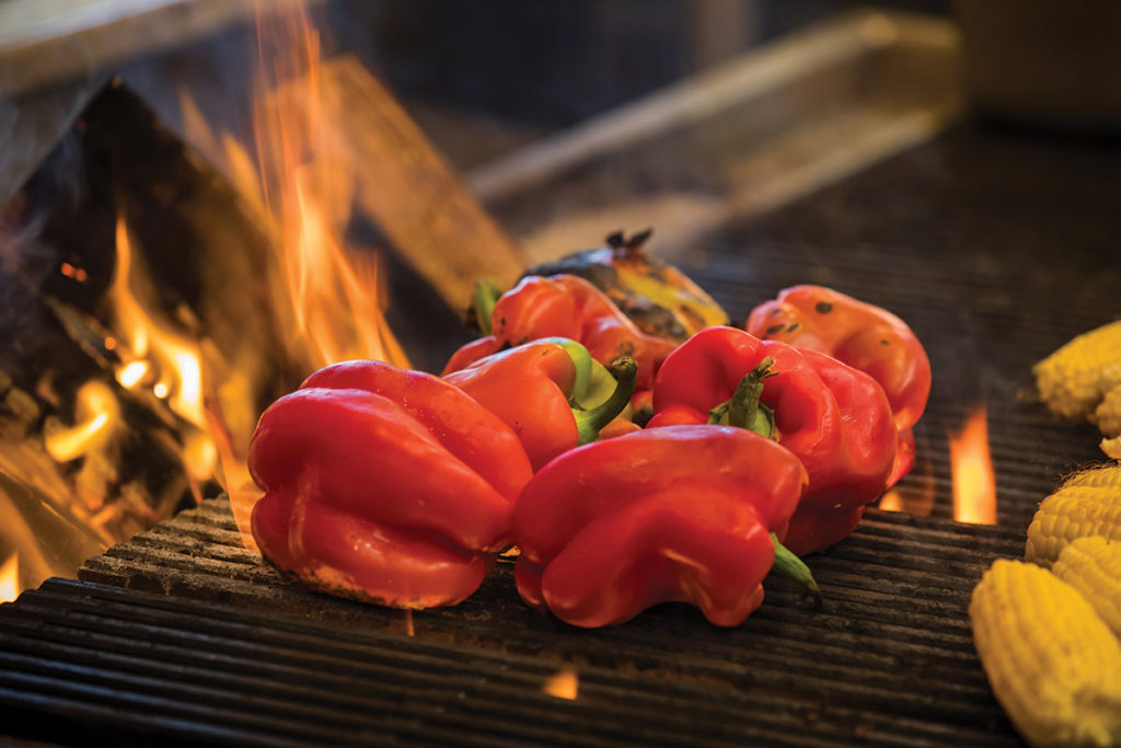 Wood-Stone-Mt-St-Helens-Grill-Firebirds-Wood-Fired-Grill